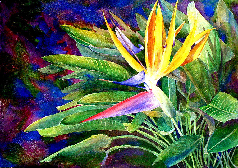 Bird of Paradise by Mary Giacomini
