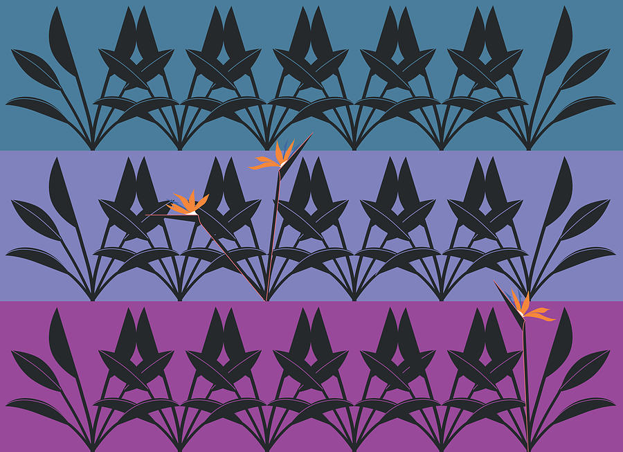 Bird of Paradise Pattern by Marie Sansone