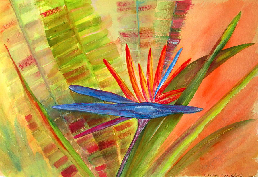 Bird of Paradise by Ashley Goforth
