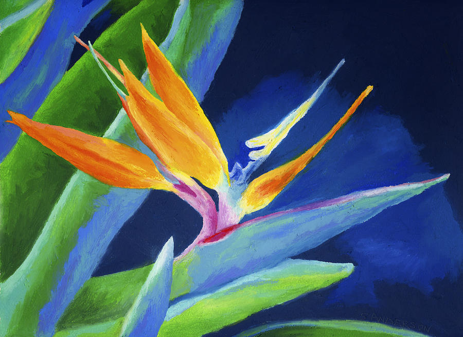 Bird Of Paradise Painting By Stephen Anderson