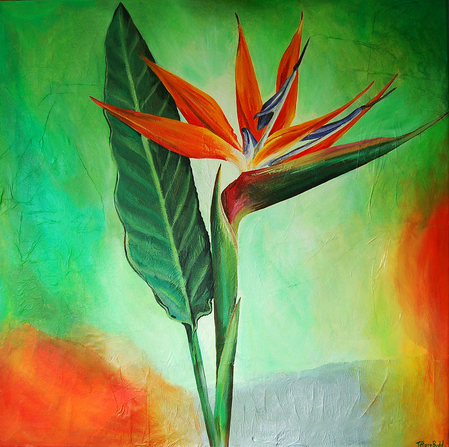 Bird Of Paradise Painting By Tiffany Budd
