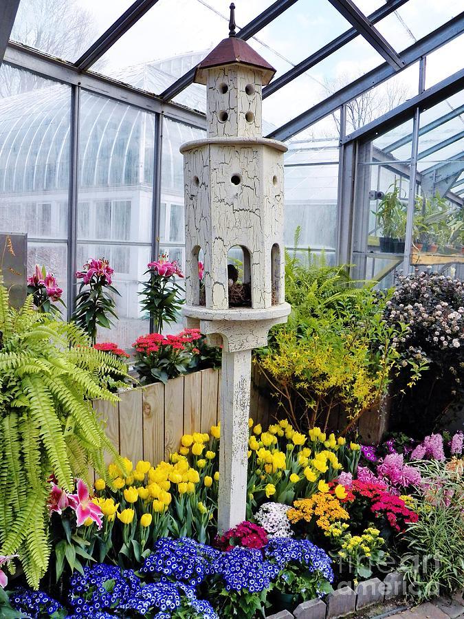 Garden Photograph - Birdhouse Garden by Judy Via-Wolff