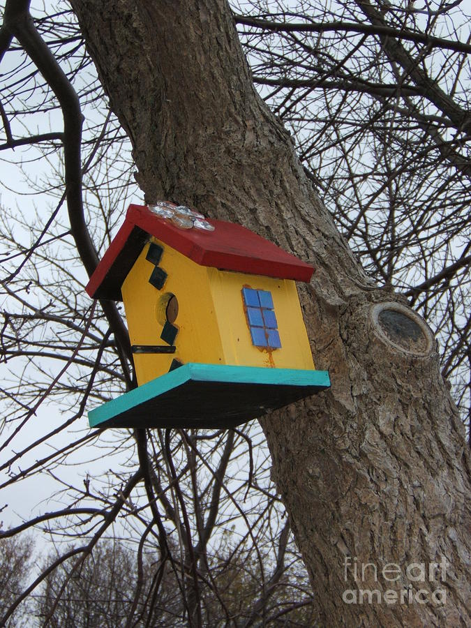 Bird House Photograph - Birdhouse Of Color by Margaret McDermott