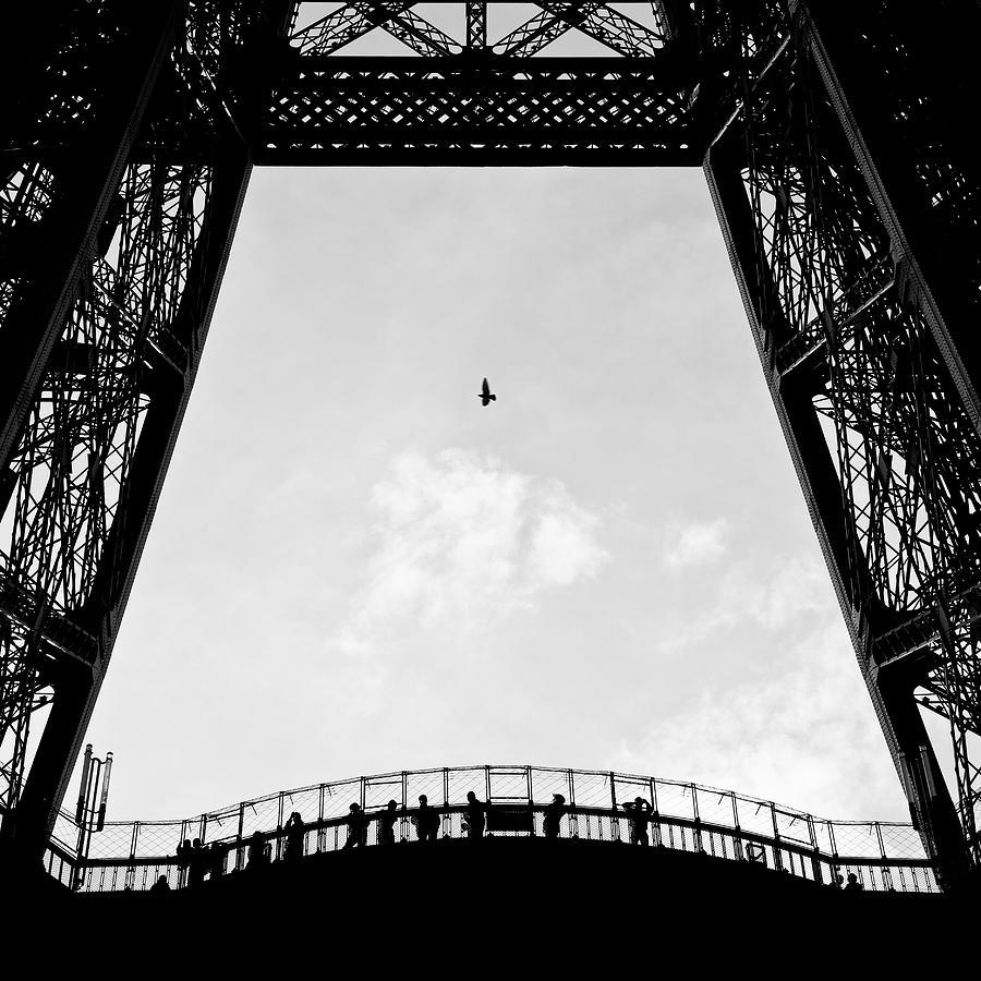Eiffel Tower Photograph - Birds-eye View by Dave Bowman