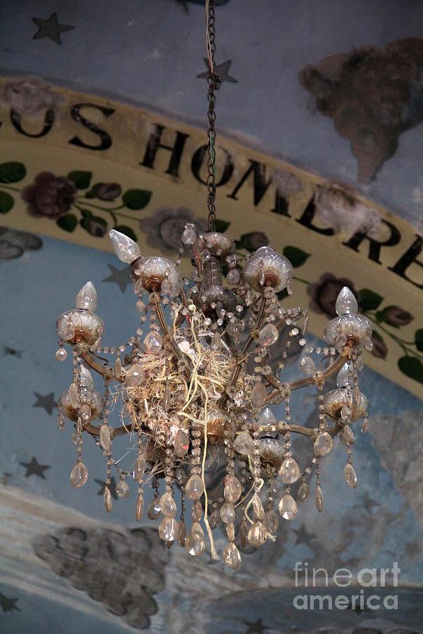 Churches Photograph - Birds Nest Olinala Mexico by Linda Queally