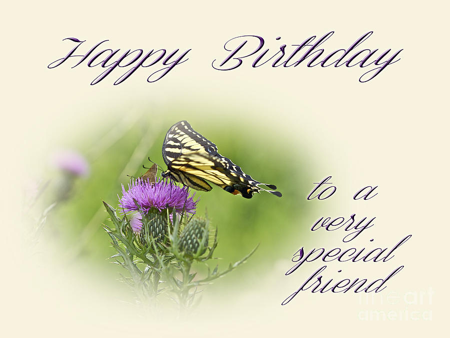 Birthday Greeting Card Special Friend Tiger Swallowtail