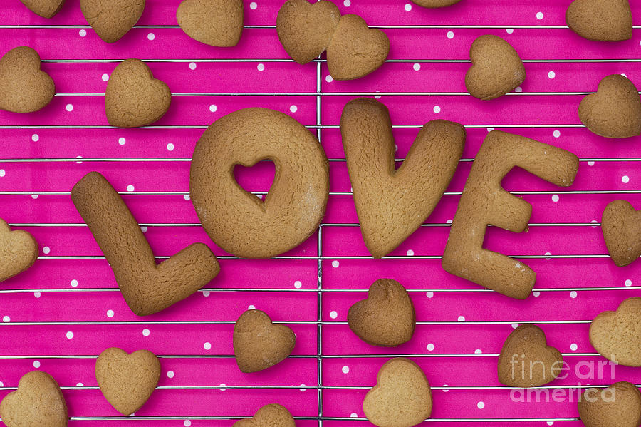 Love Photograph - Biscuit Love by Tim Gainey