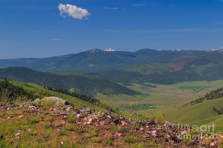 Bitterroot Photograph - Bitterroot Montana View by Charles Kozierok