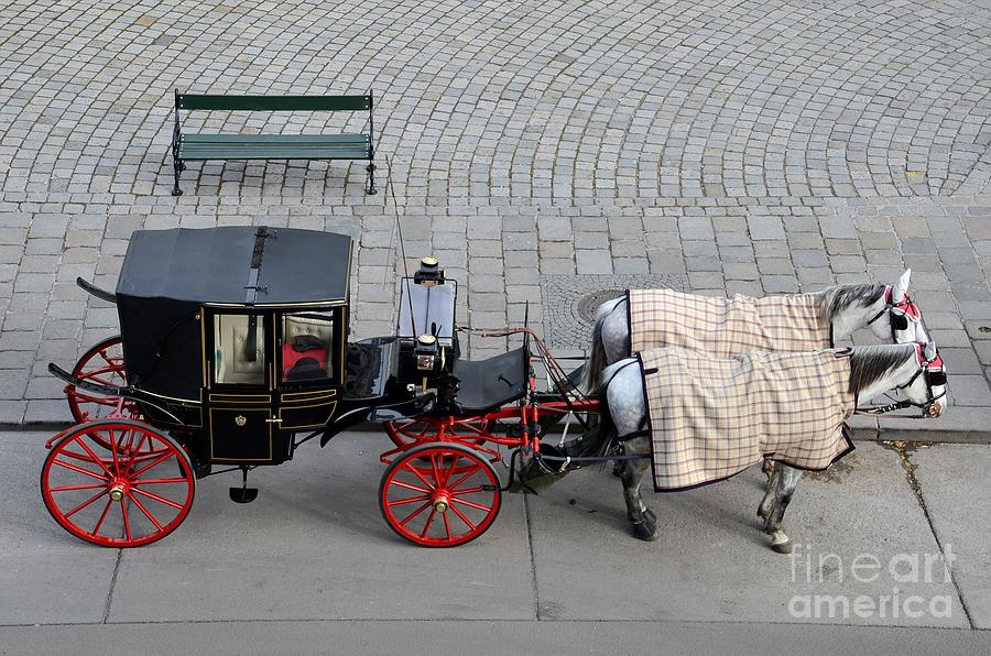 Carriage Photograph - Black And Red Horse Carriage - Vienna Austria  by Imran Ahmed