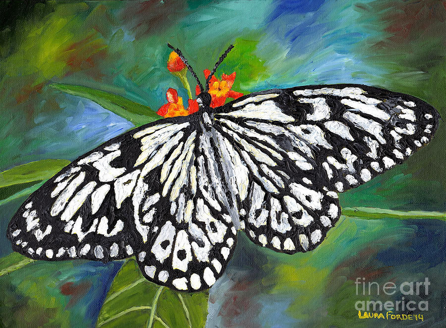 Black and White Butterfly by Laura Forde