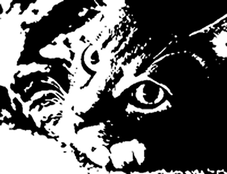 black and white cat popart painting by tanya sorth