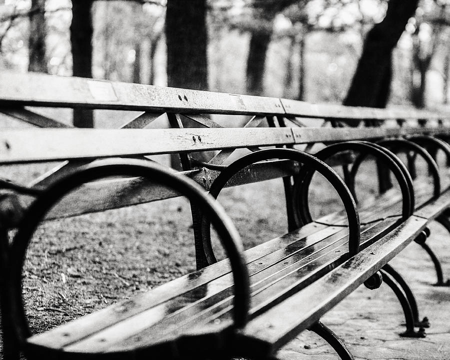 Black And White Central Park Bench In New York City Photograph By Lisa Russo