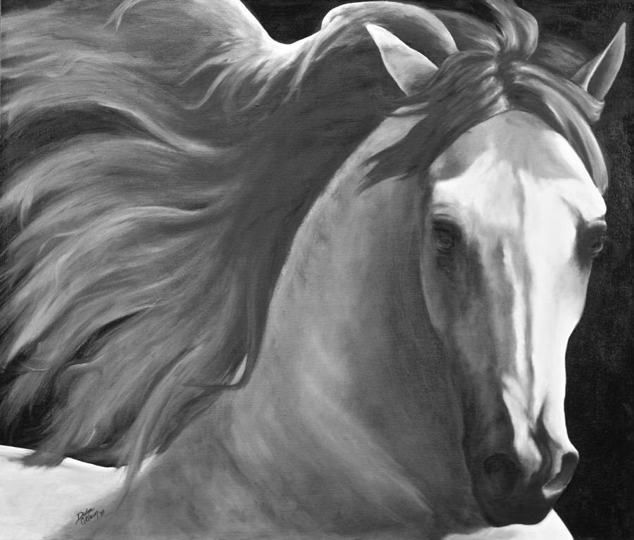 Horse painting black and white dreams by debra reiber