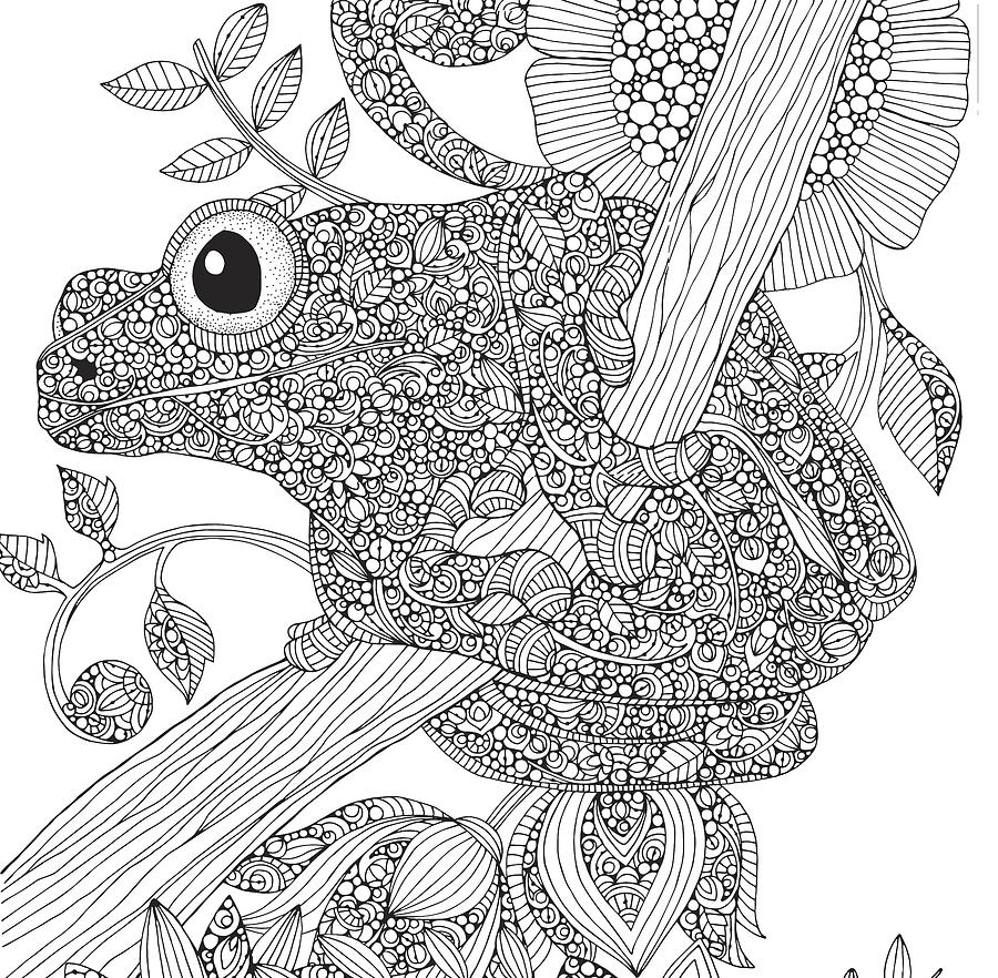 Valentina Drawing - Black And White Frog by MGL Meiklejohn Graphics Licensing