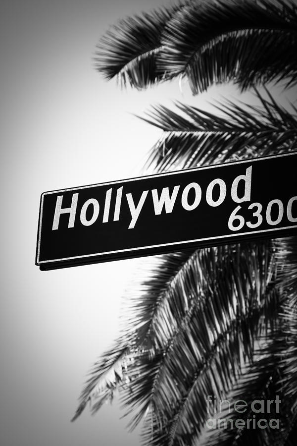 Black And White Hollywood Street Sign Photograph By Paul Velgos