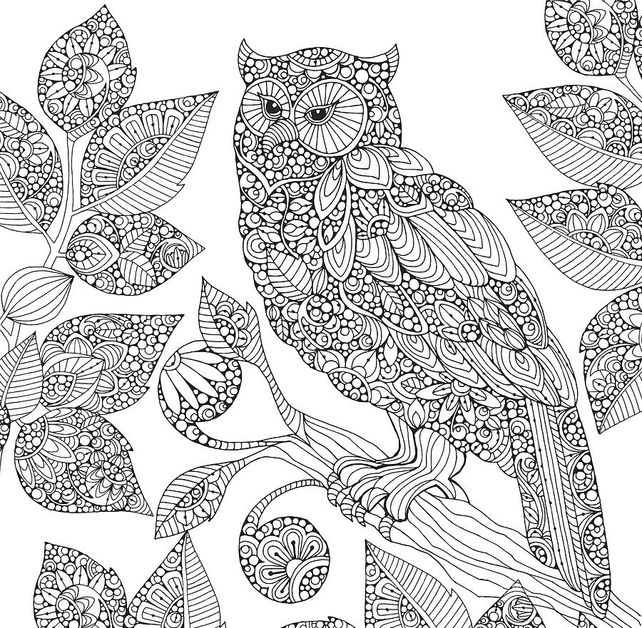 Black and white owl by mgl meiklejohn graphics licensing