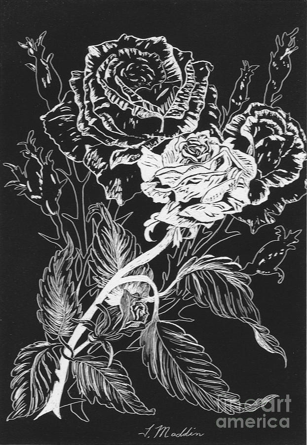 Black And White Drawing - Black And White Roses by Terri Maddin-Miller