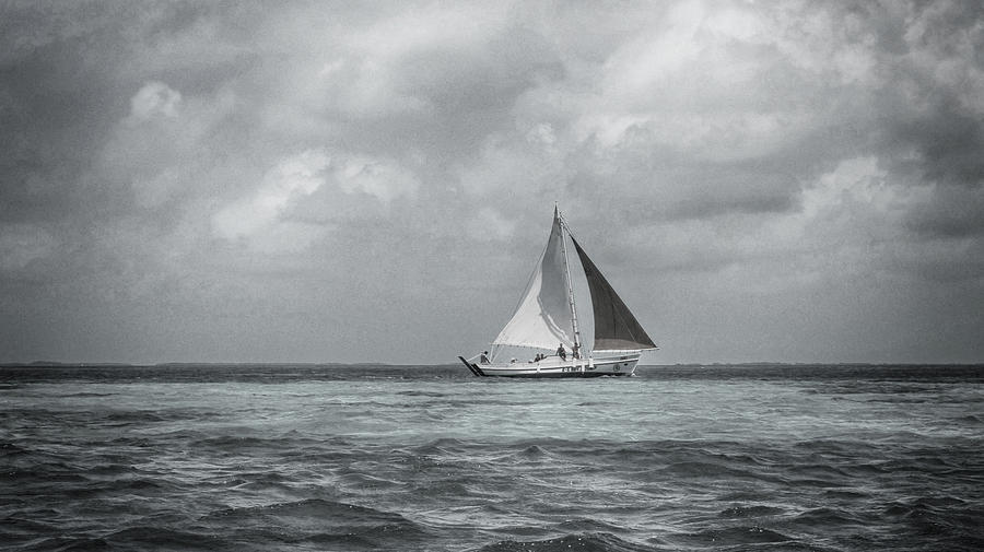 Black And White Seascapes Photograph - Black And White Sail Boat by Kristina Deane