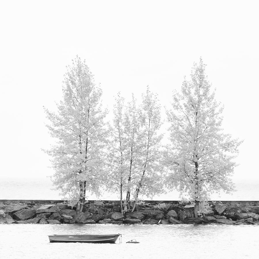 Autumn Photograph - Black And White Square Diptych Tree 12-7693 Set 1 Of 2 by U Schade