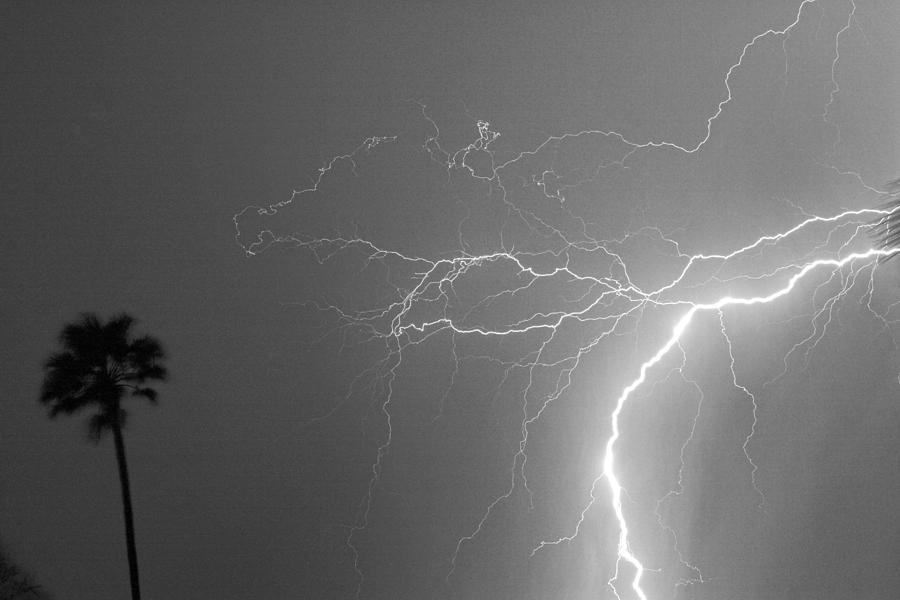 Lightning Photograph - Black And White Tropical Thunderstorm Night  by James BO  Insogna