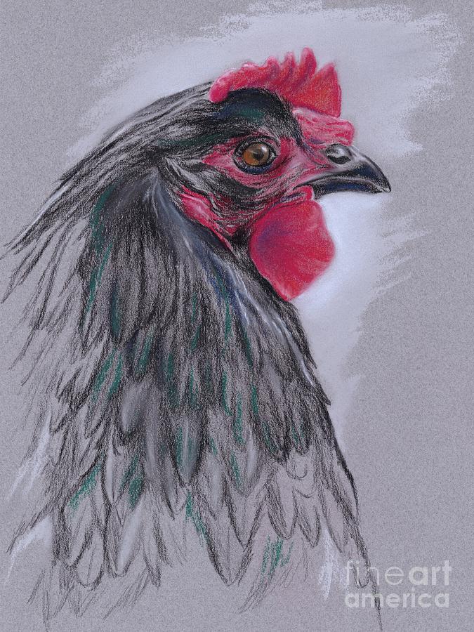 Hen Pastel - Black Australorp Hen by MM Anderson