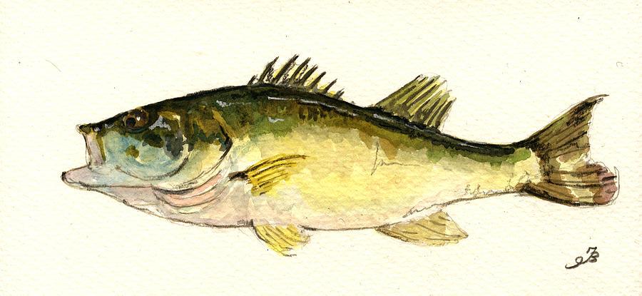 Black Bass Fish Painting by Juan Bosco