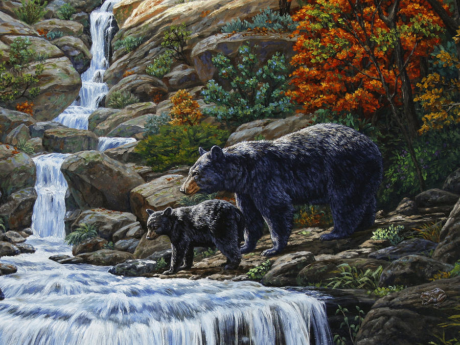 Black Bear Falls Closeup Painting By Crista Forest
