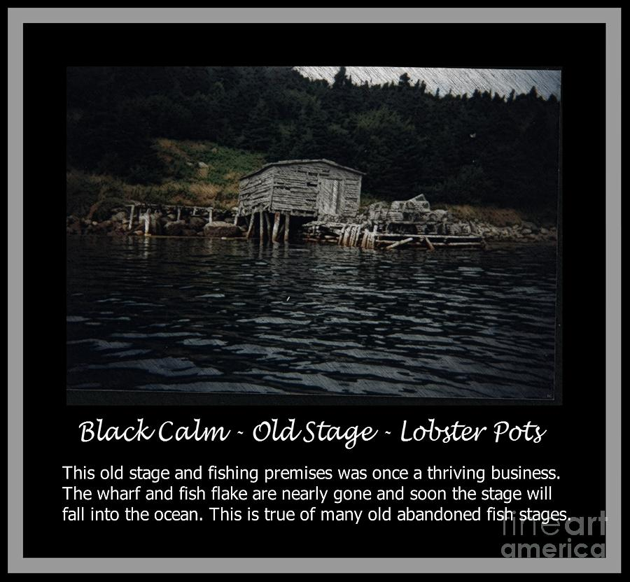 Barbara Griffin Photograph - Black Calm - Old Stage - Lobster Pots by Barbara Griffin