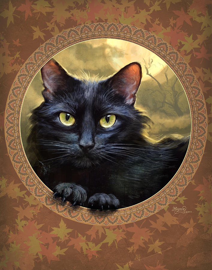 Black Cat Autumn by Jeff Haynie