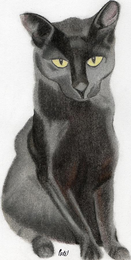 Black Pastel - Black Cat by Bav Patel