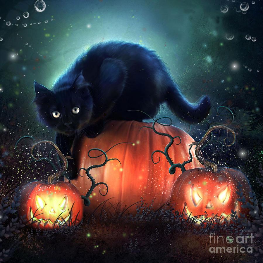 Black Cat Digital Art by Jessica Allain