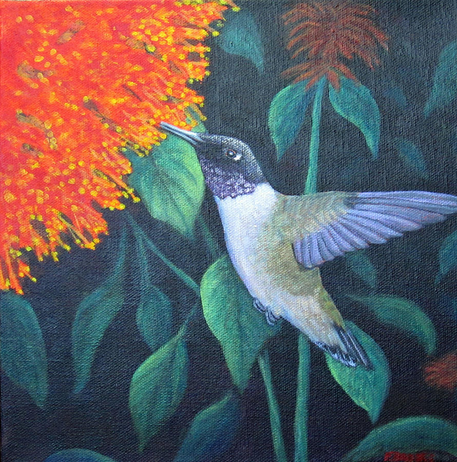 Black-Chinned Hummingbird by Fran Brooks