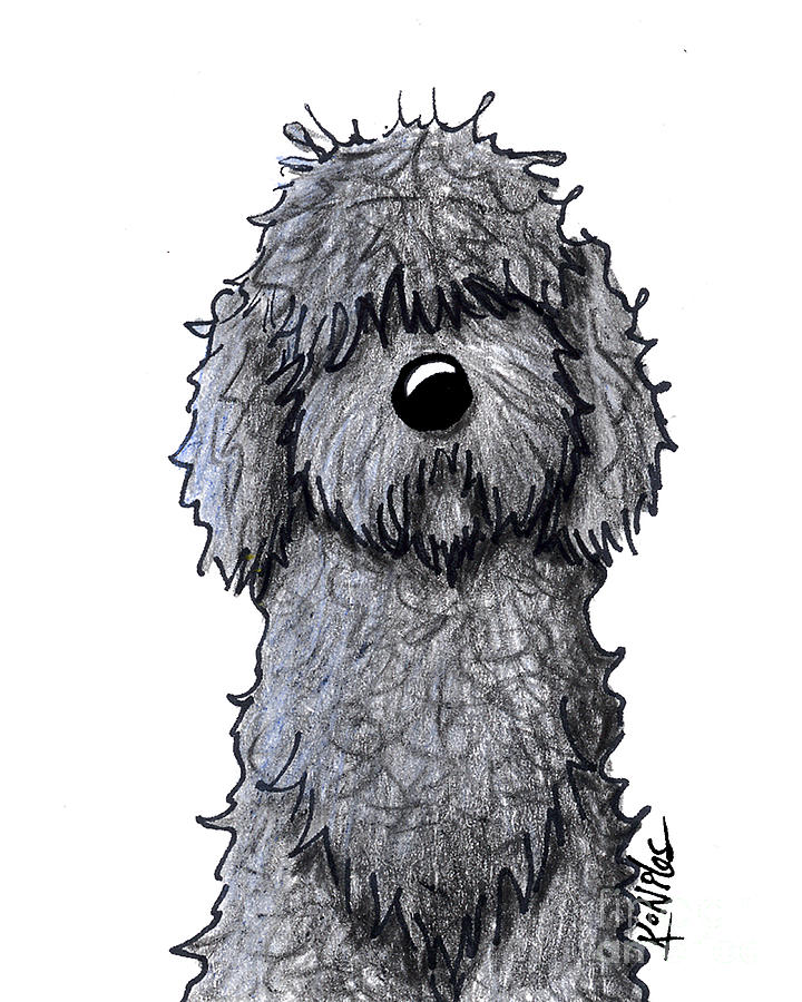 Labradoodle Drawing - Black Doodle Dog by Kim Niles