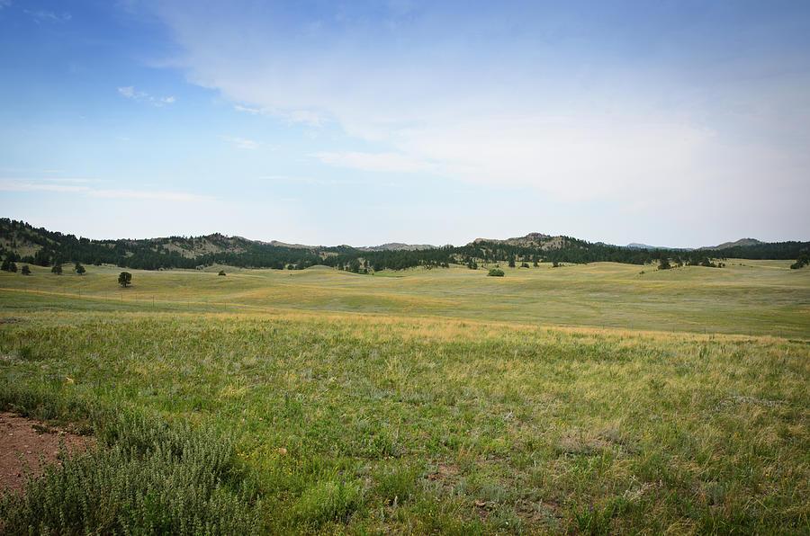 Black Hills, South Dakota Photograph by Ds70