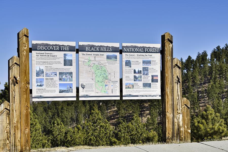 Black Hills, South Dakota Photograph by RiverNorthPhotography