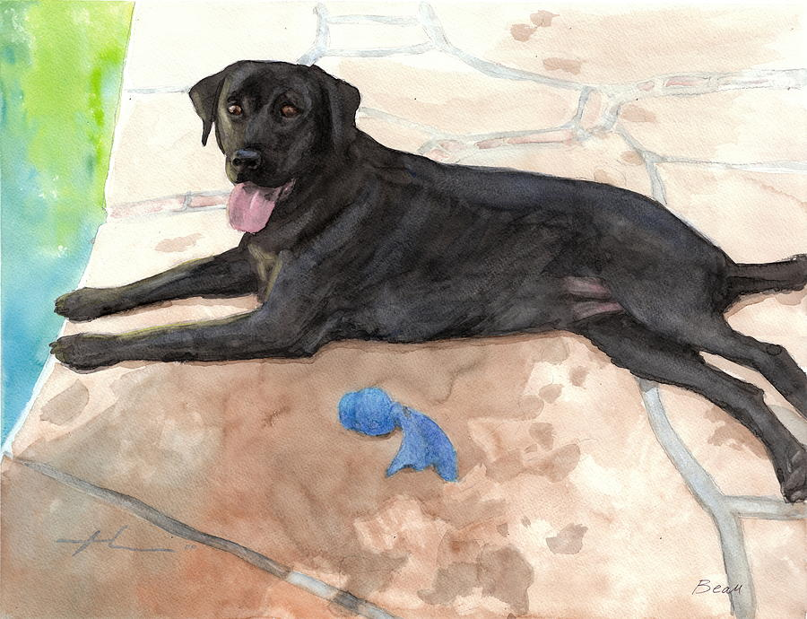 Black Lab By The Pool Watercolor Portrait Drawing by Mike Theuer