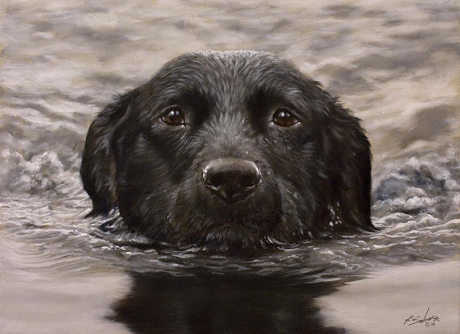 Black Labrador Portrait II by John Silver