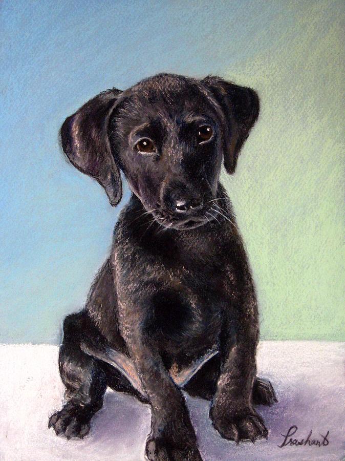 Dog Painting - Black Labrador Puppy by Prashant Shah