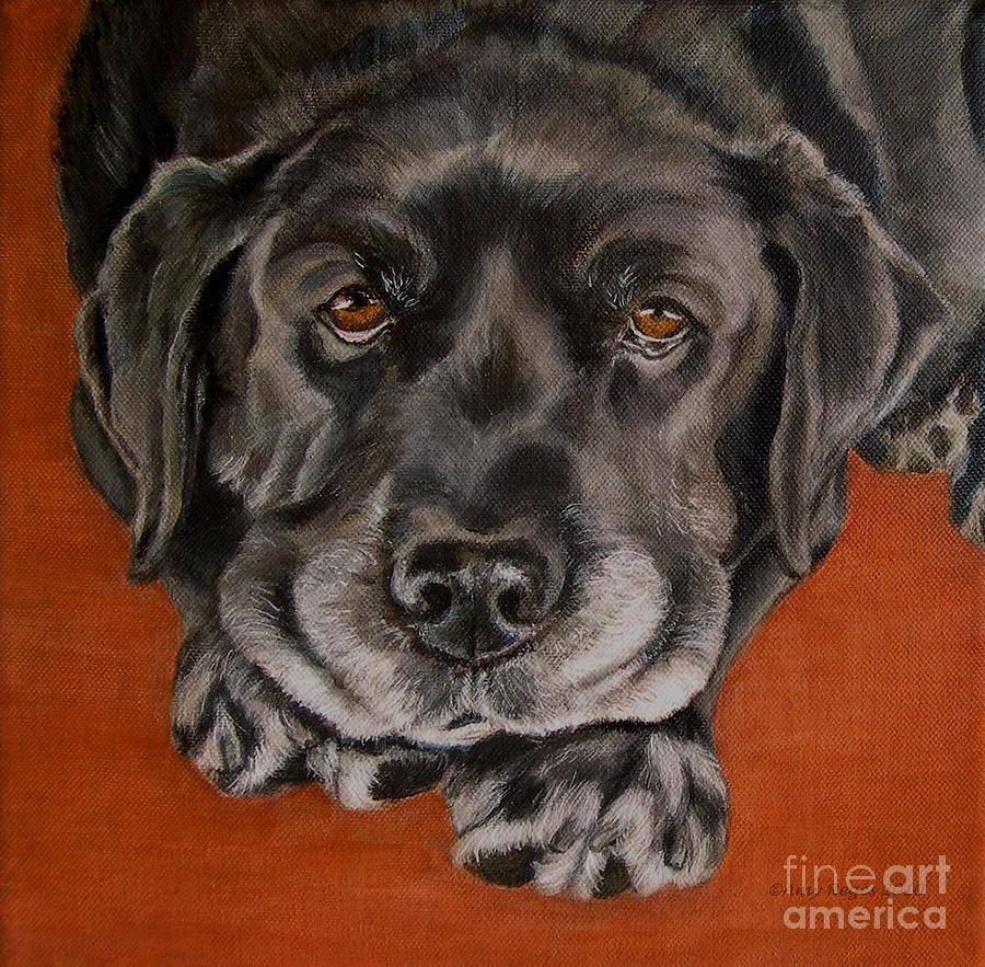Lab Painting - Black Labrador Rests Head Rescue Dog by Amy Reges