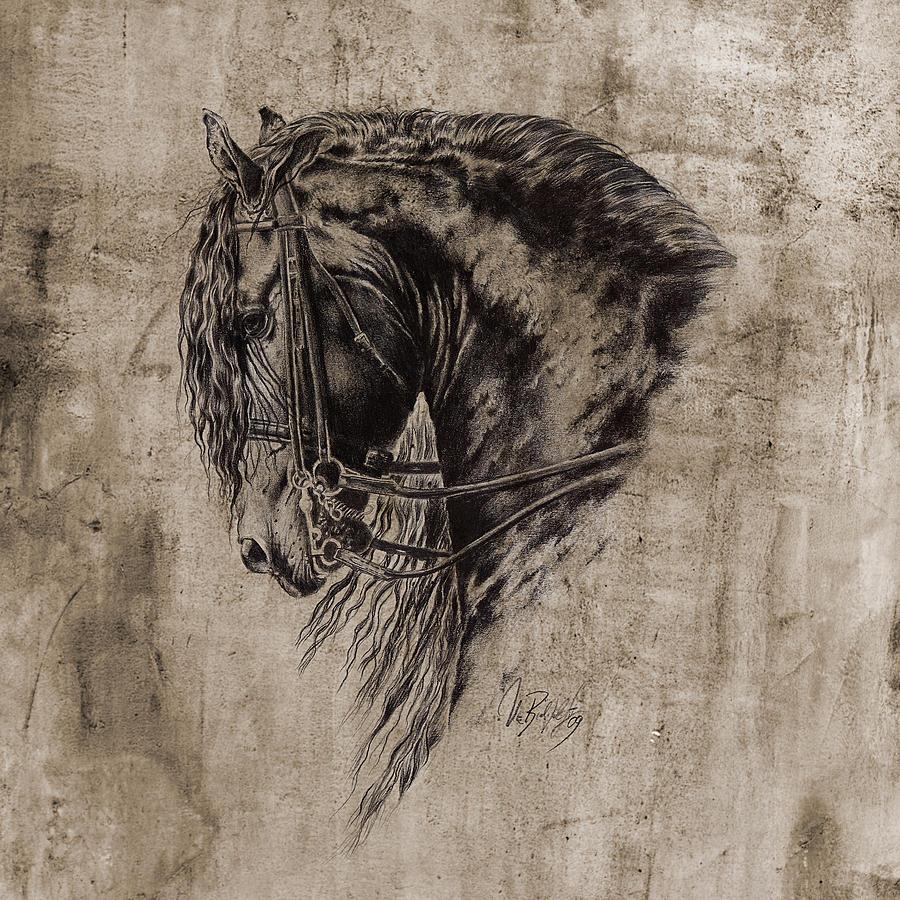 Black Cat Pencil Drawings