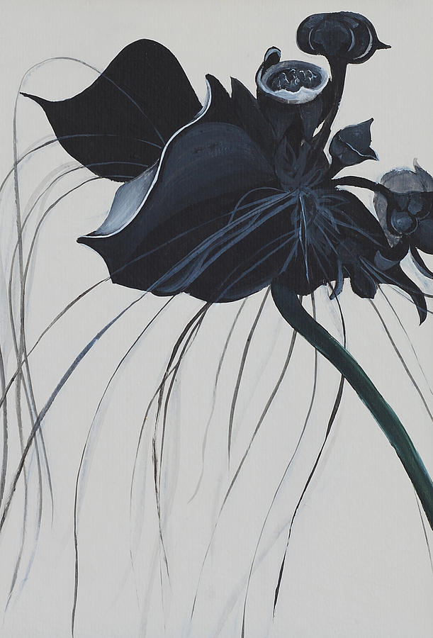 Black Orchid Painting By Catt Kyriacou
