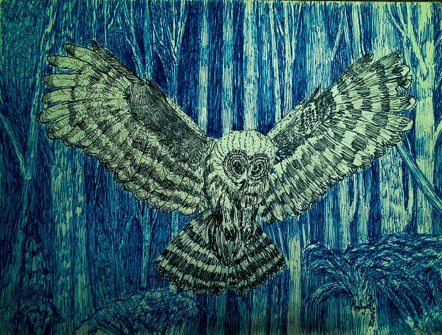 Tree Drawing - Black Owl On Blue Night by Rodger Larson