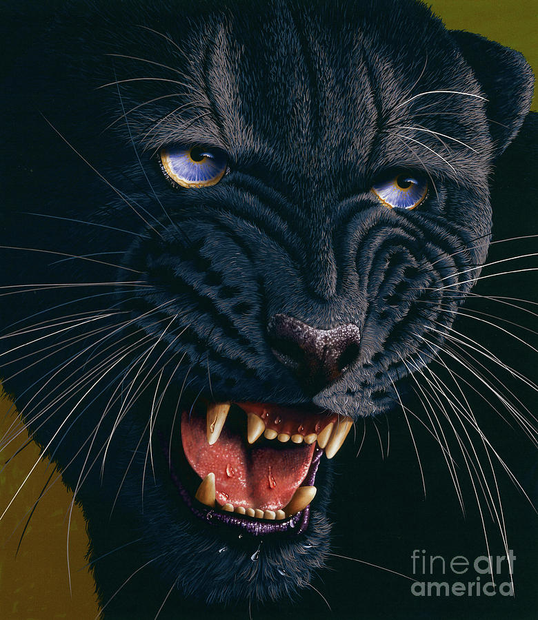 Black Panther Painting - Black Panther 2 by Jurek Zamoyski