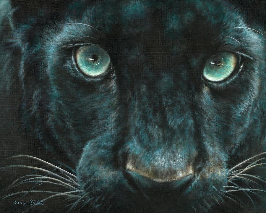 картинки глаз пантеры знаю, что