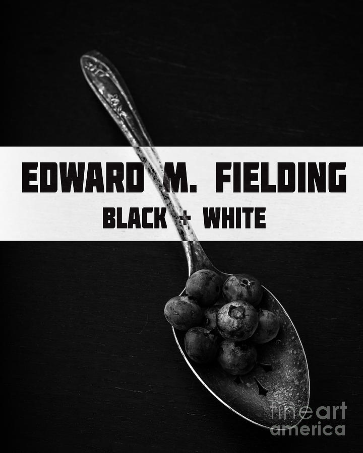 Blueberries Photograph - Black Plus White Book Cover by Edward Fielding