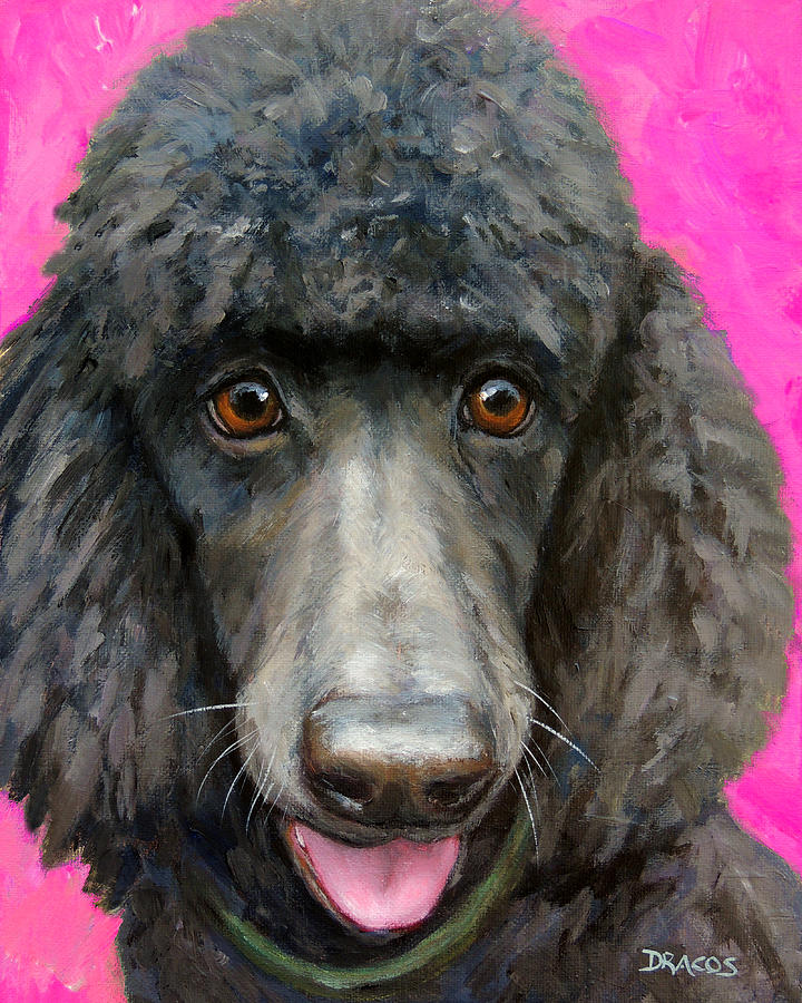 Poodle Painting - Black Poodle On Hot Pink by Dottie Dracos