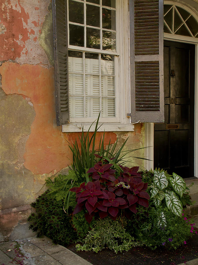 Black Shutters with Flower Bed by Sandra Anderson