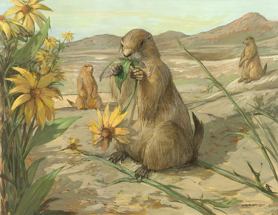 Wildlife Painting - Black-tailed Prairie Dogs by ACE Coinage painting by Michael Rothman