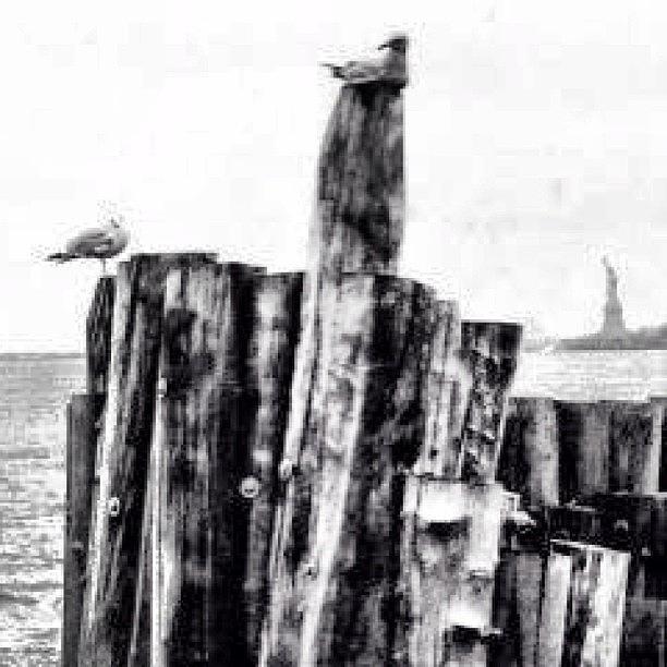 Newyork Photograph - #blackandwhite #newyork #nyc by Matthew Bryan Beck