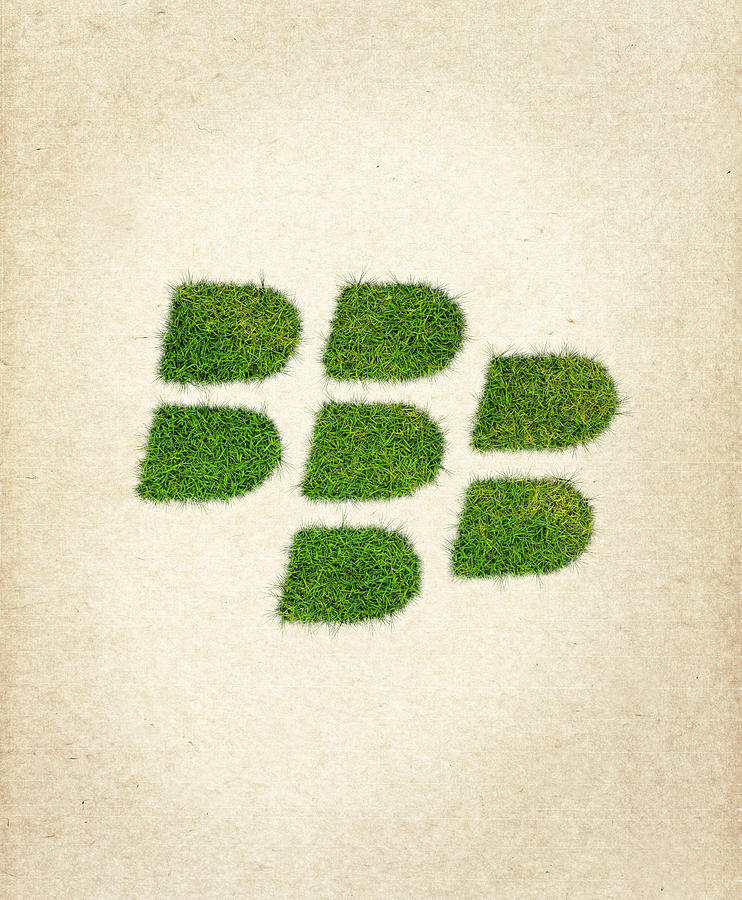 Blackberry Logo Drawing - Blackberry Grass Logo by Aged Pixel